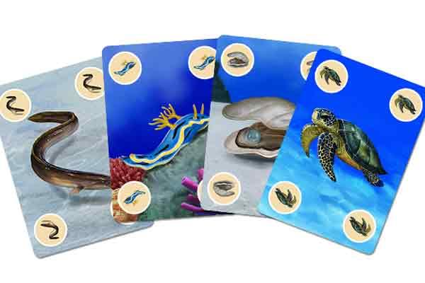 Mini Diver City - Tierkarten - Foto von Sphere Games