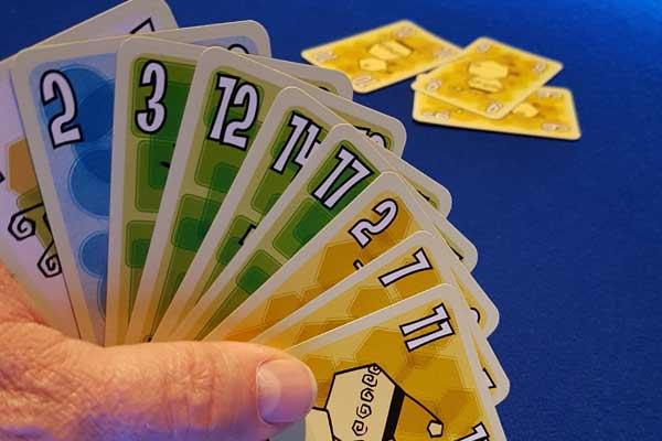 Kartenspiel Foppen - Foto von Axel Bungart