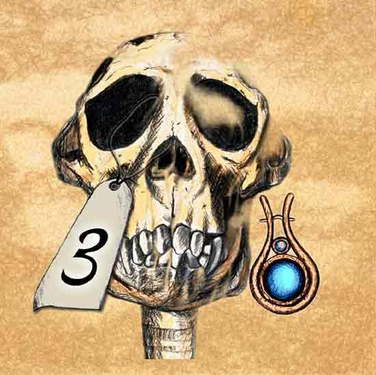 Spiel Darwinci - Knochenteil 3 - Foto von Ludo Art