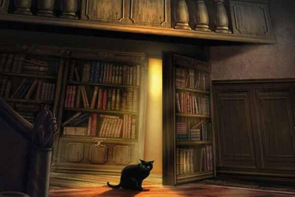 Die verlassene Bibliothek - Ausschnitt - Foto von moses.Verlag