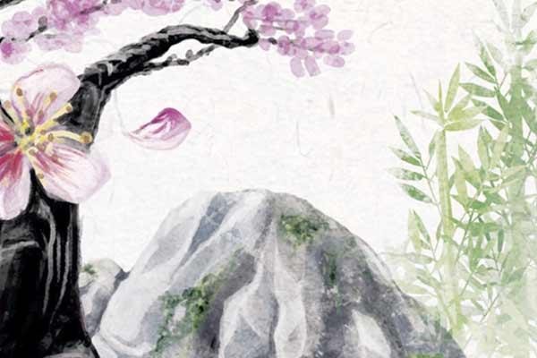 Ohanami - Ausschnitt - Foto von NSV