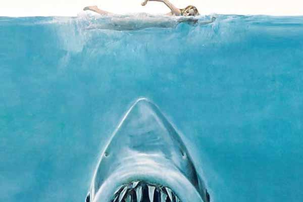 Der weiße Hai - Ausschnitt - Foto von Ravensburger