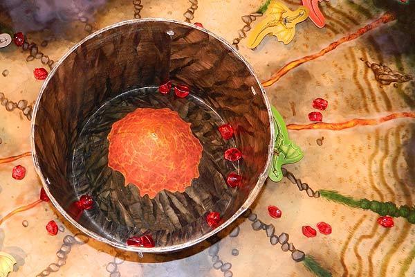 Fotoimpression von der Spiel '13: Blick in den Krater von Feuerdrachen