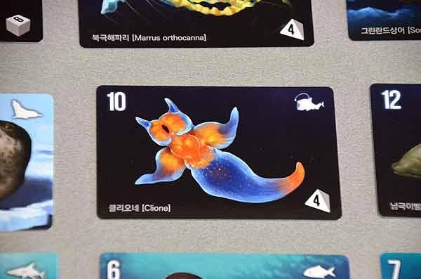 Foto von der Spiel '15: Aqua Park - Karte