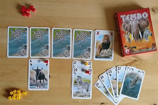 Kartenspiel Tembo - Foto: Steffi Münzer