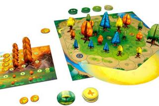 Spielmaterial von Photosynthesis - Foto von Blue Orange Games