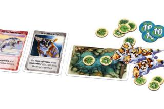 Spielmaterial Evolution - Der Einstieg - Foto von Schmidt Spiele