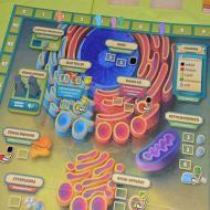 Foto von der Spiel '21: Zytose